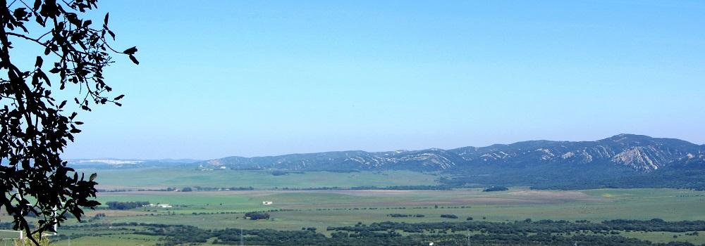 La Janda paisaje