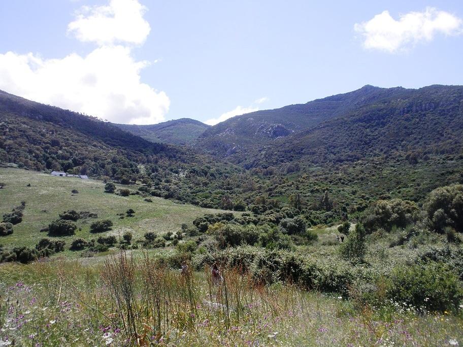Paisaje de la Sierra
