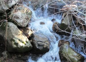 9.El Agua