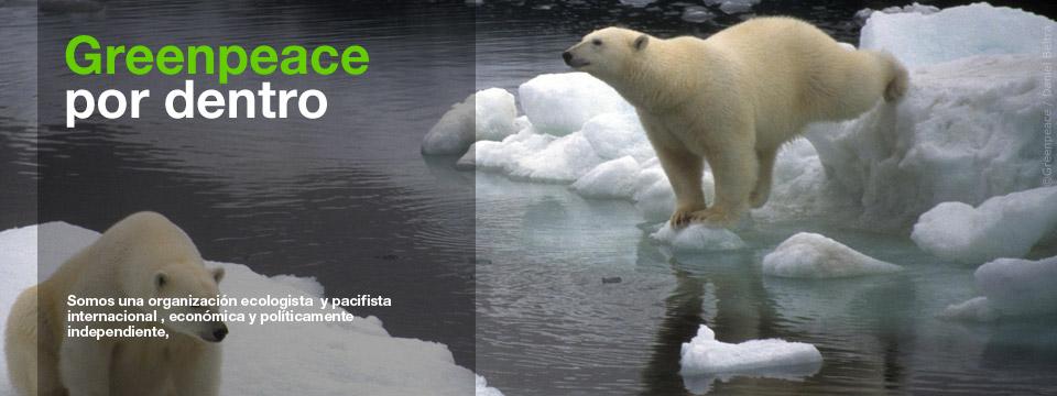 openSpace-PorDentro