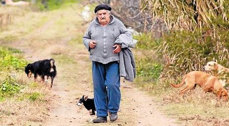 Mujica 3
