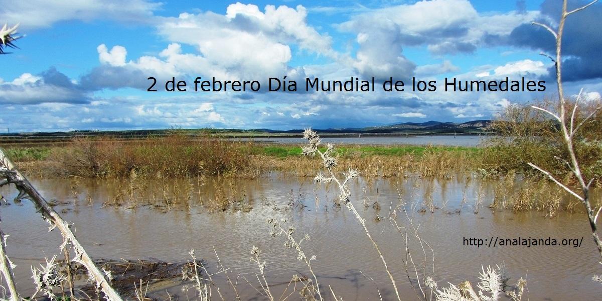 2 de febrero Día Mundial de los humnedales