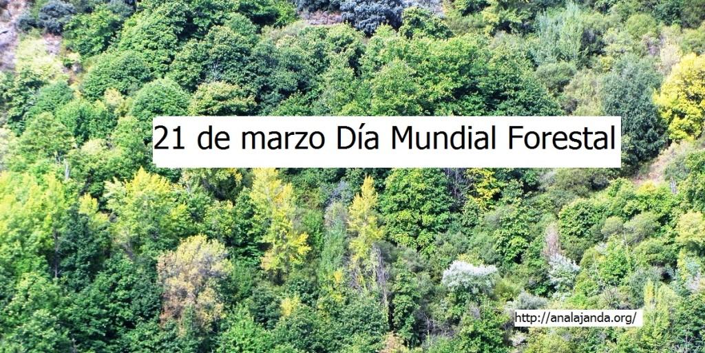 21 de marzo Día Mundial Forestal