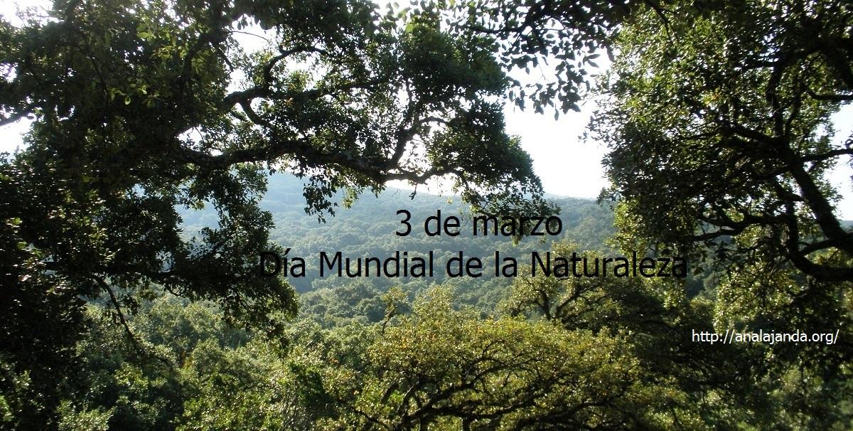 3 de marzo Día Mundial de la Naturaleza