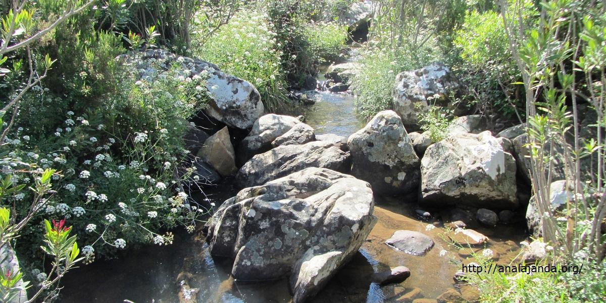 Río Barbate en la Garganta de Puerto Oscuro