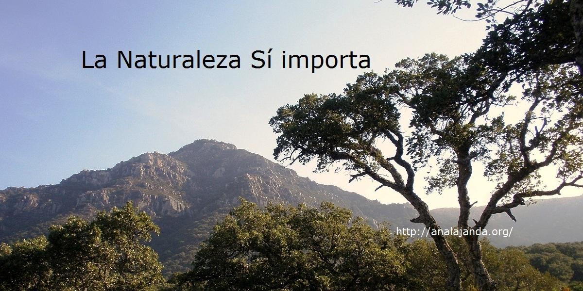 El Picacho (2)
